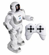 Программируемый робот Х