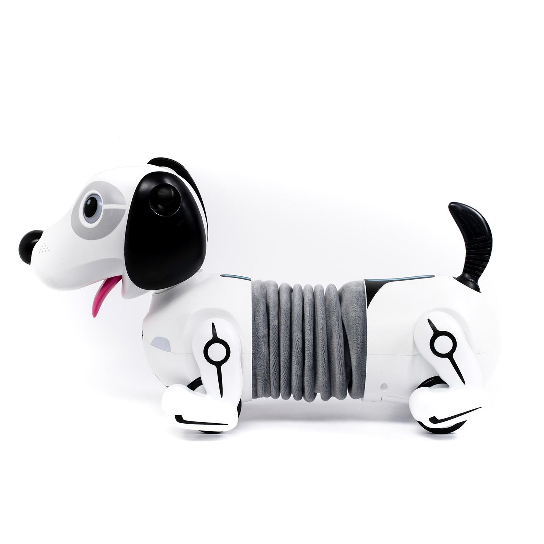 Собака робот Дэкел
